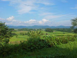 花巻棚田の風景
