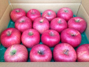 Apples of Hanamaki